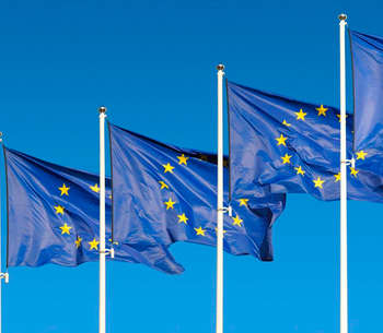 EU conformity of the Danish rules on joint taxation of companies